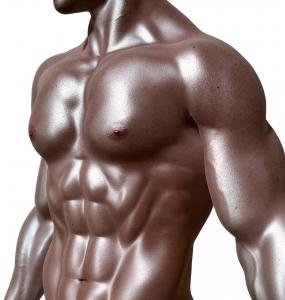 איך להשיג שרירים מהר